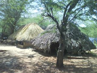 Tamilhuts